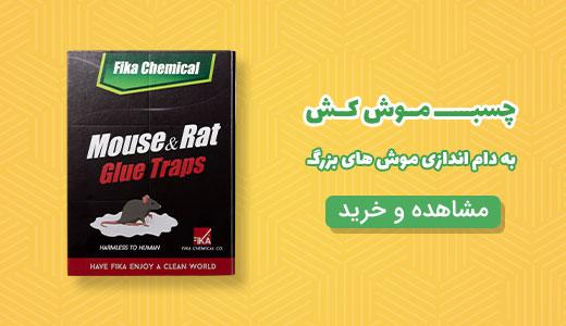 خرید چسب موش کش